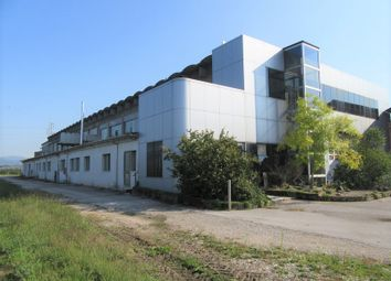 Thumbnail Business park for sale in Via Madonna Della Strà, N. 100, Belfiore, Verona, Veneto, Italy