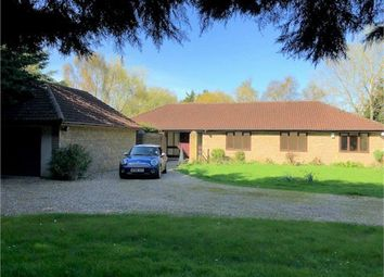 Thumbnail 4 bed detached bungalow to rent in Stepswater Lane, Wellington Road, Taunton