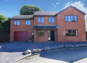 Thumbnail 6 bed detached house for sale in Llys Merllyn, Bagillt