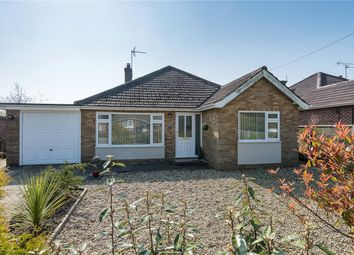 Thumbnail 3 bed detached bungalow for sale in Poringland Road, Stoke Holy Cross, Norwich, Norfolk