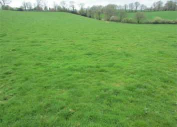 Thumbnail Land for sale in Land At Lampeter Velfrey, Near Narberth, Pembrokeshire
