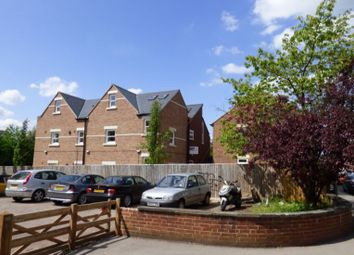Thumbnail 4 bed flat to rent in Hayfield Road, North Oxford, Oxford