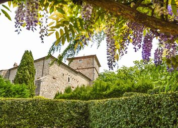 Thumbnail 6 bed château for sale in Todi, Perugia, Umbria, Italy