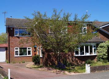 Thumbnail 5 bed detached house for sale in The Paddocks, Upper Beeding, West Sussex