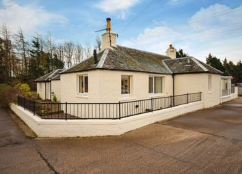 Thumbnail 2 bed semi-detached bungalow for sale in Old Gallows Road, Perth, Perthshire