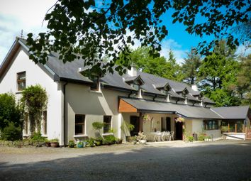 Thumbnail Property for sale in Ballaghboy Lodge Farm, Ballinafad, Sligo