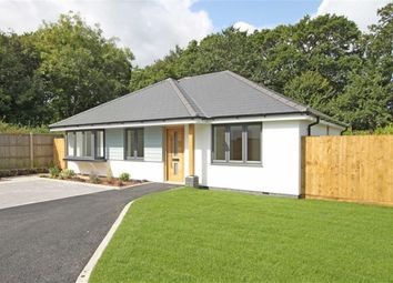 Thumbnail 3 bed detached bungalow for sale in Somerford Avenue, Highcliffe, Dorset