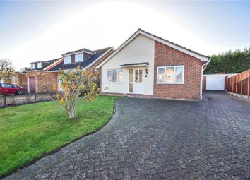 Thumbnail 3 bed detached bungalow for sale in Windmill Avenue, Wokingham, Berkshire