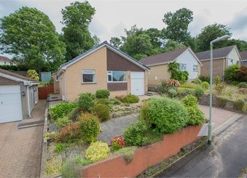 Thumbnail 3 bed detached bungalow for sale in Heath Park, Milber, Newton Abbot, Devon.
