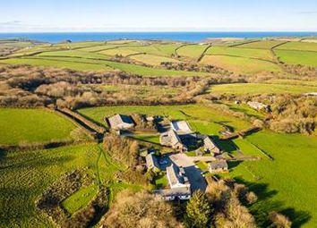 Thumbnail Leisure/hospitality for sale in Treworgie Barton, Crackington Haven, Bude, Cornwall