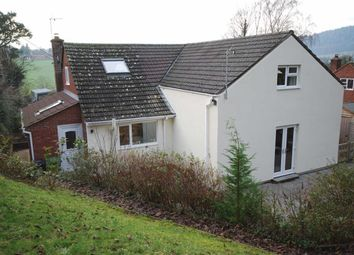 Thumbnail 4 bed detached bungalow for sale in Pontshill, Ross On Wye, Herefordshire