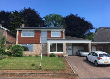 Thumbnail 4 bed detached house for sale in Princess Road, Hoveland Park