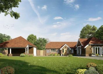 Thumbnail 4 bed bungalow for sale in Marlow Road, Pinkneys Green, Berkshire