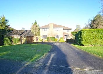 Thumbnail 5 bed detached house to rent in St Huberts Close, Gerrards Cross