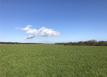 Thumbnail Land for sale in Beal, Berwick-Upon-Tweed, Northumberland
