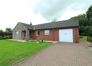 Thumbnail 3 bedroom detached bungalow to rent in Forest View, Lamonby, Penrith, Cumbria