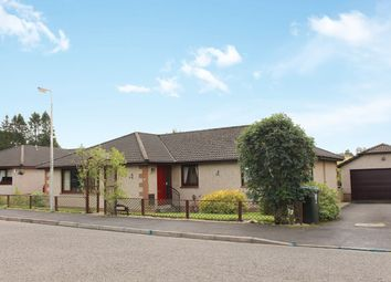 Thumbnail 4 bed bungalow for sale in Allandale Crescent, Greenloaning, Dunblane