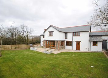 Thumbnail 4 bed detached house to rent in Upcott, Welcombe, Devon