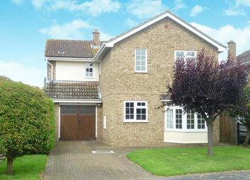 Thumbnail 4 bed detached house to rent in The Lammas, Mundford, Thetford