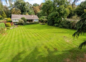 Thumbnail 4 bed detached bungalow for sale in Hawkshill Way, Esher, Surrey