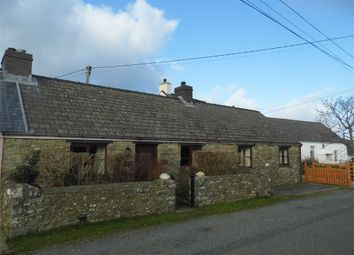 Thumbnail 2 bed semi-detached bungalow to rent in Rhodiad, St Davids, Haverfordwest, Pembrokeshire
