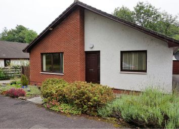 Thumbnail 3 bed bungalow for sale in Burnmouth Road, Dunkeld
