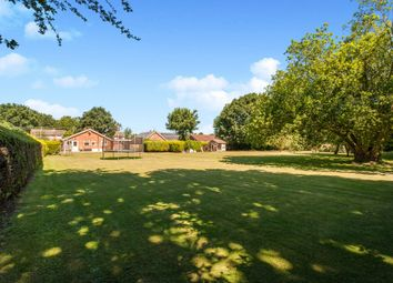 3 bed detached bungalow for sale in Common Road, Bressingham, Diss IP22