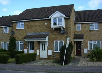 Thumbnail 2 bed property to rent in Lichfield, Biggleswade