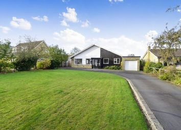 Thumbnail 3 bed bungalow for sale in Claver Close, Swainby, North Yorkshire, England