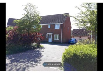 Thumbnail 3 bed semi-detached house to rent in Ivy Road, Norwich