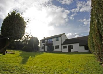 Thumbnail 4 bed detached house for sale in Newport, Berkeley