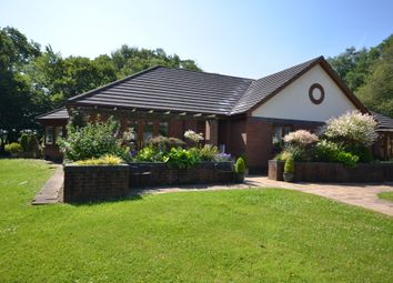 Thumbnail 2 bed bungalow for sale in 18 The Paddocks, Gittisham Hall Park, Honiton, Devon