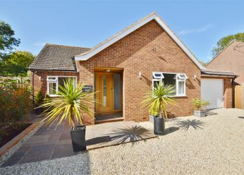 Thumbnail 4 bed detached bungalow for sale in Chapel Lane, Long Marston, Tring