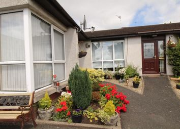 Thumbnail 1 bed bungalow to rent in Old Movilla Road, Newtownards