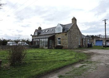 Thumbnail 3 bed semi-detached house to rent in Mill Of Allathan, Ellon, Aberdeenshire