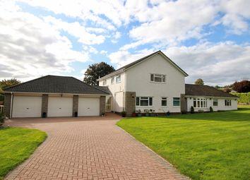 Thumbnail 4 bed detached bungalow for sale in Castle Rise, Llanvaches, Caldicot