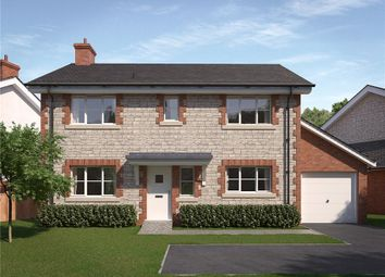 Thumbnail 4 bed detached house for sale in Ash Green, West Bourton Road, Bourton, Gillingham