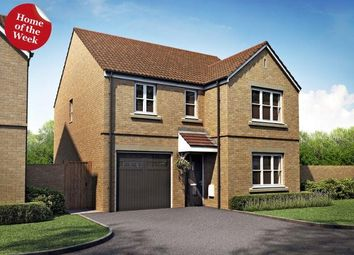 Thumbnail 4 bedroom detached house for sale in Plot 16 Kendall, The Orchard, Fenstanton