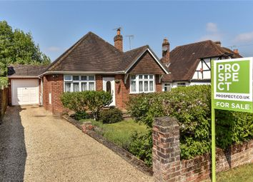 Thumbnail 3 bed detached bungalow for sale in Larch Avenue, Wokingham, Berkshire
