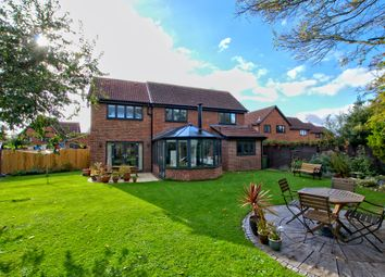 Thumbnail 4 bed detached house for sale in Hayster Drive, Cherry Hinton, Cambridge