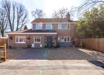 Thumbnail 4 bed detached house for sale in Attlee Gardens, Church Crookham, Fleet