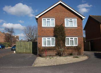 Thumbnail 4 bed detached house for sale in Elm Close, Sturminster Newton