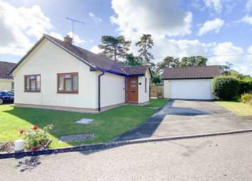 Thumbnail 3 bed bungalow for sale in The Paddocks, Thornford, Dorset