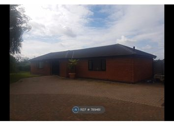 Thumbnail 4 bed bungalow to rent in Tilbury Road, West Horndon, Brentwood