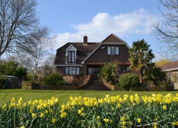 Thumbnail 4 bed property to rent in Hamm Court, Weybridge, Surrey