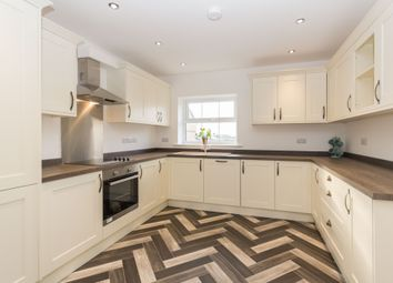 Thumbnail 3 bed mews house for sale in Primrose Road, Barrow-In-Furness