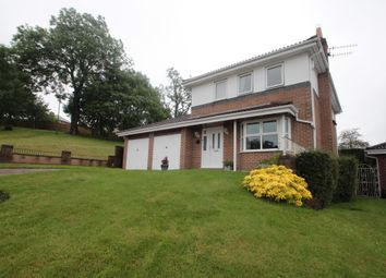 Thumbnail 4 bed detached house for sale in Briarside, Blackhill, Consett