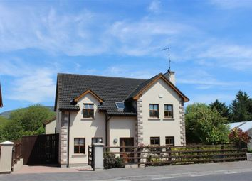 Thumbnail 6 bedroom detached house for sale in The Valley, Mullaghbawn