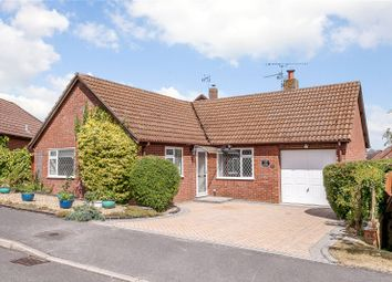 Thumbnail 3 bed bungalow for sale in Salisbury Close, Odiham, Hook, Hampshire
