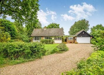 Thumbnail 4 bed detached house for sale in Hill Common, Hickling, Norwich, Norfolk